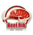Beef rib vector image vector image