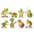 cartoon cute tortoise set vector image