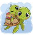 cartoon water turtles father and son on a blue vector image