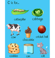 Different words for letter C vector image