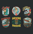 hawaii surfing vintage colorful labels vector image