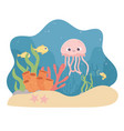 jellyfish fishes starfish shrimp life coral reef vector image