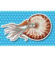 Sea creature vector image vector image