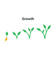 the process of growing plants stages and timeline vector image vector image
