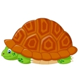 turtle cartoon hiding in his shell vector image vector image