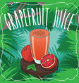 fresh grapefruit juice in glass with ripe fruits vector image vector image