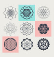 sacred geometry floral symbols vector image vector image
