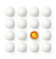 set of eggs with yolk vector image vector image