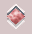 abstract modern design with rose gold texture vector image vector image