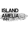 amelia island hotels text word cloud concept vector image vector image