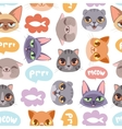 Cat head seamless pattern vector image vector image