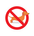 no dog allowed sign vector image vector image
