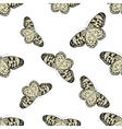 Seamless pattern with butterfly Idea Leuconoe vector image vector image