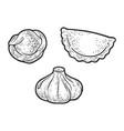 set dumplings sketch vector image