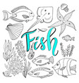 sketches fish set hand drawn marine set adult vector image vector image