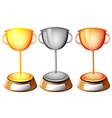 Three trophies vector image