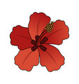 tropical flower icon image vector image