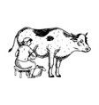 woman milk cow engraving vector image vector image
