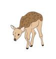 baby deer silhouette