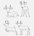 cartoon impala thin lines collection isolated on w vector image