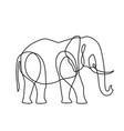 endless line art elephant vector image