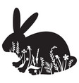 floral bunny or rabbit vector image