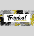 poster with tropical leaves in monochrome shades vector image vector image