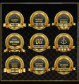 vintage retro labels symbols set vector image