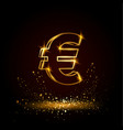 gold euro money symbol vector image