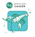 Cancer Astrology Sign vector image