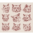 hand drawn sketch set cats vector image