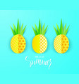 hello summer banner with sweet paper pineapples on vector image vector image