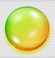 transparent yellow and green sphere with shadow vector image vector image