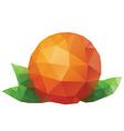 Polygonal Orange vector image