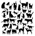 pet animal silhouettes vector image