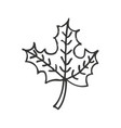 autumn leafs decoration icon vector image vector image