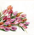 beautiful background with tulip flowers vector image vector image