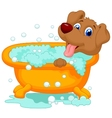 Cartoon Dog bathing time vector image