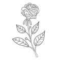 adult coloring bookpage a cute rose