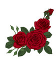 Beautiful bouquet with three red roses and leaves