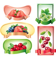 berries labels vector image