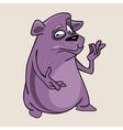 cartoon cute purple bear vector image vector image