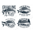 grayling fly fishing logo the lady of the river