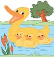 Happy Duck Family vector image