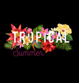 hello summer design tropical hibiscus flowers vector image