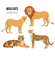 Predatory animals lion lioness cheetah tiger vector image vector image