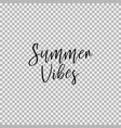 summer vibes transparent background vector image vector image