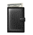 black leather wallet with dollars on white