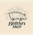butcher shop logo or label farm animal pig vector image vector image