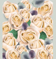 cream roses bouquet watercolor floral background vector image vector image